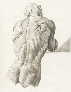 Vintage Anatomy Male Back Muscle Drawing - Jacques Gamelin (October 3, 1738 – October 12, 1803); Carcassonne, France