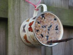 Make a cute homemade bird feeder in a mug to help feed the birds this Winter! It's cheap and easy to make and is a great thing to do for the birds. Homemade Bird Houses, Homemade Bird Feeders, Bird Houses Diy, Diy Bird Feeder, Bird Suet, Best Bird Feeders, Squirrel Feeder, Wild Bird Feeders, Bird House Feeder