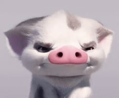 The perfect MoanaPigPua Pua Pig Animated GIF for your conversation. Discover and Share the best GIFs on Tenor. Wallpaper Iphone Disney, Cute Disney Wallpaper, Cute Cartoon Wallpapers, Pig Wallpaper, Disney Art, Disney Pixar, Moana Gif, Pua Pig, Funny Animals