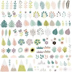 Cute flowers and plants big collection vector image on VectorStock Adobe Illustrator, Vector Free, Design Inspiration, Big, Illustration, Cute, Collection, Board, Summer