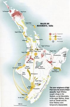 This map shows the major iwi movements of the caused by the inter-tribal conflicts known as the Musket Wars. Social Studies Projects, Teaching Social Studies, Teaching History, Nz History, History Online, Maori Legends, Maori Words, Map Of New Zealand