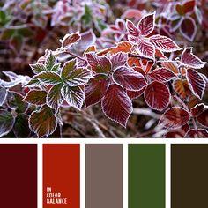 ализариновый красный, алый, болотный зеленый, бордовый, бордовый цвет, зеленый, красный, красный и зеленый, оливковый, оттенки зеленого, оттенки красного, палитры для дизайнера, палитры цветов, подбор цвета, сочетание цветов для декора интерьера, тёмно-красный, цвет вина, цвет зелени, цвет красных маков, цвет крови, цвет маковых стеблей, цвета для декора, цветовое решение, цветовое решение для дизайна, цветовое решение для дизайна помещений, цветовые палитры для декора, цветовые сочетания.