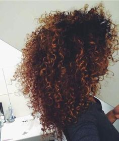Dark brown natural curly hair with light brown highlights.