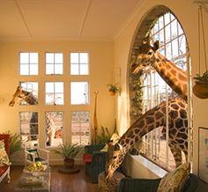 Giraffe Hotel, Kenya