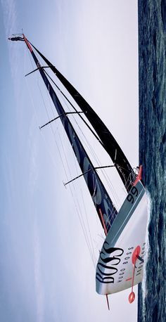 Lean Sailing - Seatech Marine Products & Daily Watermakers Sail Racing, Yacht World, Volvo Ocean Race, Sail Away, In The Tree, Catamaran, Courses, Sea Creatures, Canoe