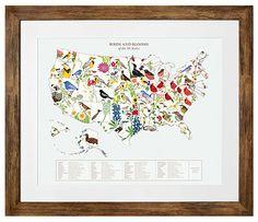 Birds and Blooms Art - U.S. Map