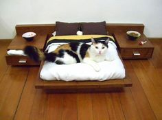 33 Modern Cat and Dog Beds, Creative Pet Furniture Design Ideas this is awesome! If I did this my cat would still prefer my head. Lol Tap the link for an awesome selection cat and kitten products for your feline companion! Crazy Cat Lady, Crazy Cats, Hate Cats, Cool Cats, Gatos Cat, Japanese Cat, Fancy Cats, Pet Furniture, Furniture Design