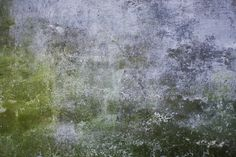 wildtextures_mossy_old_concrete_wall.jpg (3600×2400)