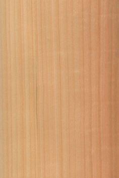 Kirschbaum europäisch | Furnier: Holzart, Kirsche, Blatt, hell, rot, rötlich, Laubholz #Holzarten #Furniere #Holz