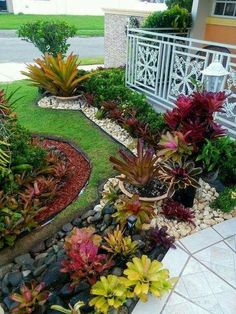 Tropical landscape design front yard modern small stone landscaping ideas in front yard home decor stores . Small Front Yard Landscaping, Stone Landscaping, Florida Landscaping, Tropical Landscaping, Backyard Landscaping, Landscaping Ideas, Succulent Landscaping, Tropical Backyard, Succulent Plants