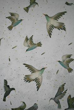 birds+jane+ray+berlie+doherty+buddingbookworm+cover.jpg 1,067×1,600 pixels