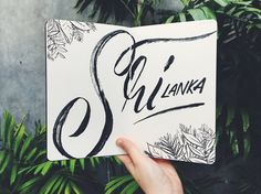 Liz Tregaskis Illustration & Lettering • Sketchbook