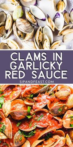 Clams in red sauce is always a hit. Steamed clams are cooked in an easy garlicky homemade tomato sauce and finished with fresh basil. This italian seafood dish works well as either an appetizer or dinner idea! Clam Recipes, Best Seafood Recipes, Lobster Recipes, Shellfish Recipes, Steamed Clams, Homemade Tomato Sauce, Scallop Recipes, Seafood Dinner, Pasta