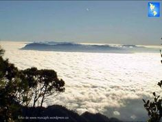 This the view you get when you climb the highest point in Honduras :  The Mountain Celaque in Lempira at 9,344'