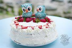 Sweet little owl cake