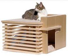 Image result for cat litter box design ideas