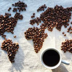 Taste the World with Just One Sip as illy Premium Coffee Takes Flight on United, and LuxeGetaways is there to learn more about this unique partnership. I Love Coffee, Hot Coffee, Coffee Break, Morning Coffee, Coffee Art, Café Bistro, Drinking Every Day, Café Chocolate, Premium Coffee