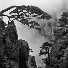 Black and White by Chaerul-Umam