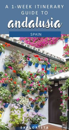 You HAVE to travel to Andalucia Spain (somethings spelled Andalusia). It has some of the beautiful places from the Alhambra in Granada to Cordoba and more. Here's my 1 week itinerary filled with things to do and places to see. #andalusia #spain