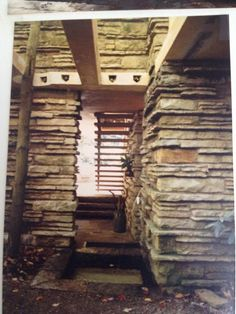 Lower stair, coming in from first level. - Falling Water, Frank Lloyd Wright