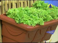 Santa Receita | Aprenda a fazer uma mini horta em casa! - 15 de Maio de 2014 - YouTube