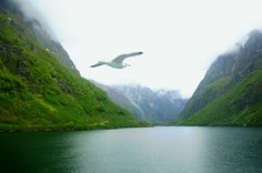 See 2 photos from 15 visitors to Norway. 2 Photos, Norway, Mountains, Nature, Travel, Naturaleza, Voyage, Trips, Traveling