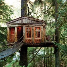 Cabins in the Washington wilderness at Tree House Point, USA