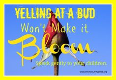 Yelling at a Bud Won't Make it Bloom! Speak gently to  your children today. Disciplining Children, Gentle Parenting, Foster Parenting, Parenting 101, Gentleness, Train Up A Child, Parents, Beautiful Children, Best Mom