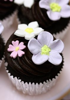 Chocolate cupcake with chocolate icing and gumpaste flowers