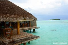 maldives Trip  http://www.tommyooi.com/7-important-tips-to-know-when-planning-maldives-trip/