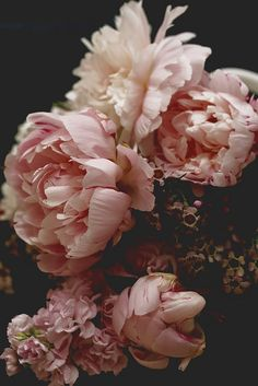 If you've ever experienced the pain of an emotionally dead relationship or if you've ever had a man suddenly pull away and shut you out. Peonies are forever the most romantic vibe Diy Flowers, Beautiful Flowers, Beautiful Life, Spring Flowers, Flowers Background, Flower Aesthetic, Flower Wallpaper, Belle Photo, Flower Art