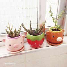 Super cute flower pots add colour to your life.  @mariferojea  #daiso #daisoau