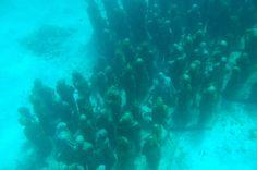 channel islands de californie   Como chegar ao Museo Subaquático de Arte em Isla Mujeres   Viajar é ...