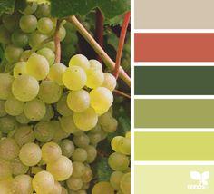 - On the Vine - design seeds Color Uva, Grape Color, Color Pick, Colour Pallette, Colour Schemes, Color Combos, Color Patterns, Color Palate, Design Seeds