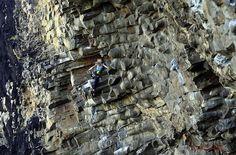 Escala? No, vivo #escalada #bulder