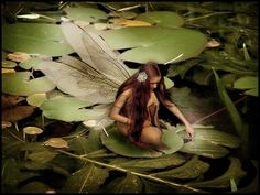 Human girl with the dragonfly wings