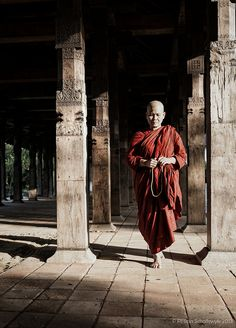 Morning Walk by travel religion tourism temple beautiful culture asia walking sri lanka buddhism buddha monk srilank Buddha, Walking By, Kandi, Southeast Asia, Sri Lanka, Travel Photos, The Good Place, Traveling By Yourself, Tourism