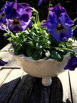 Keramik-Schale für Blumen im Online-Shop von www.Landhausidyll-Gartenkeramik.de