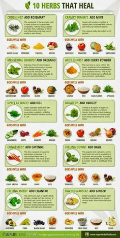 Herbal Plants for Medicine