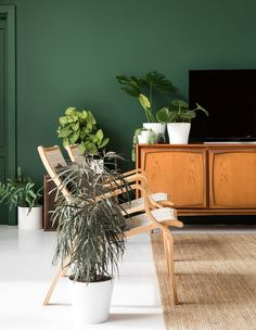 Eco House by Etica Studio. This nature-inspired eco-house is composed with style vintage elements and reclaimed materials that exude freshness and charm. Dark Green Walls, Mid Century Sideboard, Deco Boheme, Bohemian Living, Dark Bohemian, Bohemian Interior, Eco Friendly House, Blog Deco, Australian Homes