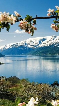 Hardangerfjord and mountains in springtime, Norway