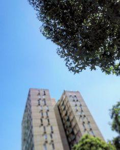 #tower #tree #park