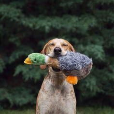 maddie à la chasse