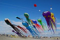 are those...jelly kites???, no, looks more like octopus.