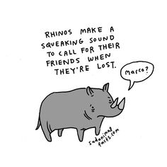 I've got some bad news about rhinos.