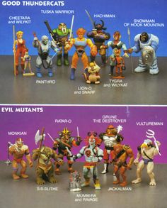 Thunder Cats Action Figures