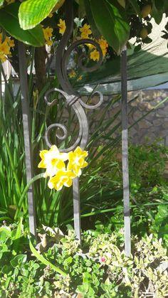 Floreal Garden Villa, Santa, Fork, Villas