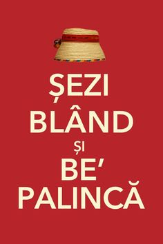 *Keep Calm and drink palinca*- de Maramures . Pune, Funny Walk, Opening A Restaurant, Romanian Food, Romanian Recipes, Romania Travel, Keep Calm And Drink, The Next Big Thing, Funny Messages