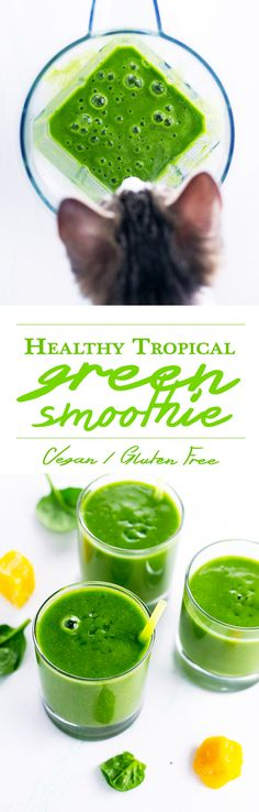 Healthy Tropical Green Smoothie. Made with coconut water and various tropical fruit. Light, hydrating, and full of vitamins and fiber.