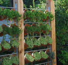 Need Privacy? DIY Garden Privacy Ideas   The Garden Glove